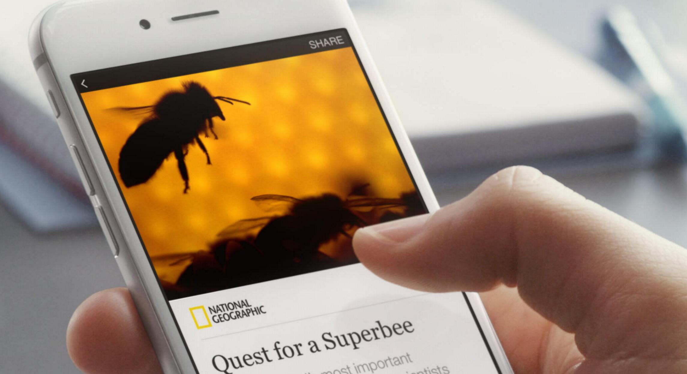 FB Instant Articles