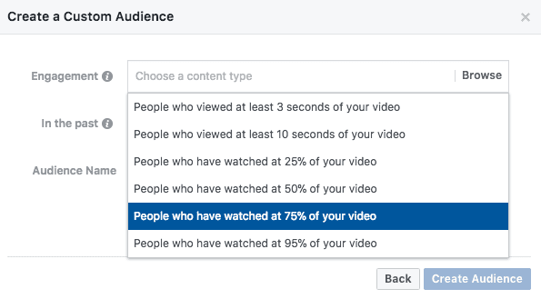Custom-Audience-Video-Completion